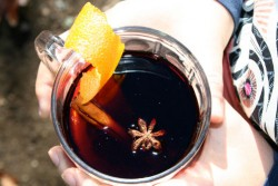 Citrus Spiced Mulled Wine