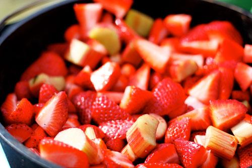 Chopped fresh strawberries and rhubarb