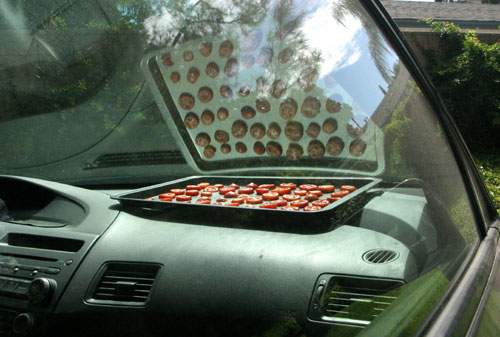 Sun drying tomatoes in the car
