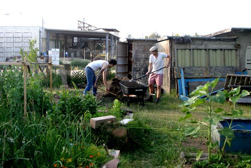 Boys shoveling compost