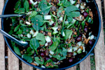 image for Lentil Spinach Salad