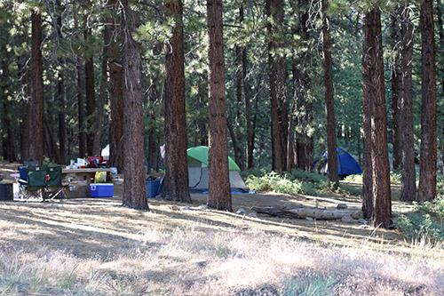 mcgill-campground