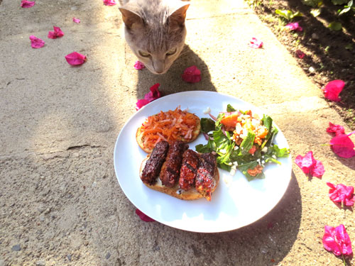 Tempeh BBQ Sandwich with cat