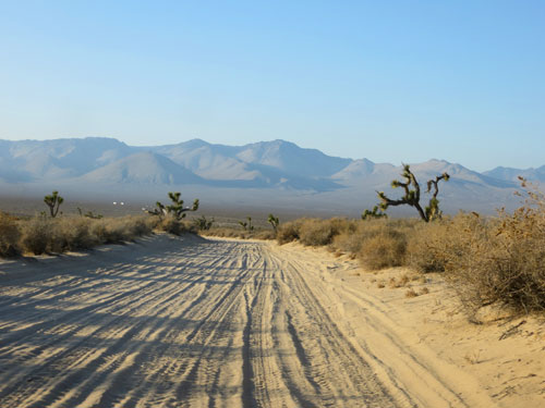 sandy-trail