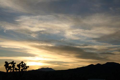 joshua-tree-clouds