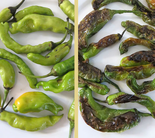 blistered-shisito-peppers