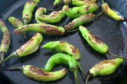 cast-iron-blistered-shisito-peppers