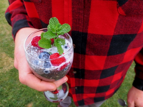 chia-pudding-wes