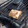 pea-walnut-pesto-panini-1