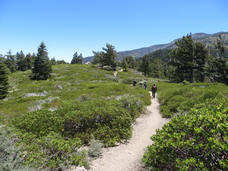 trailchuggers-san-bernardino-peak