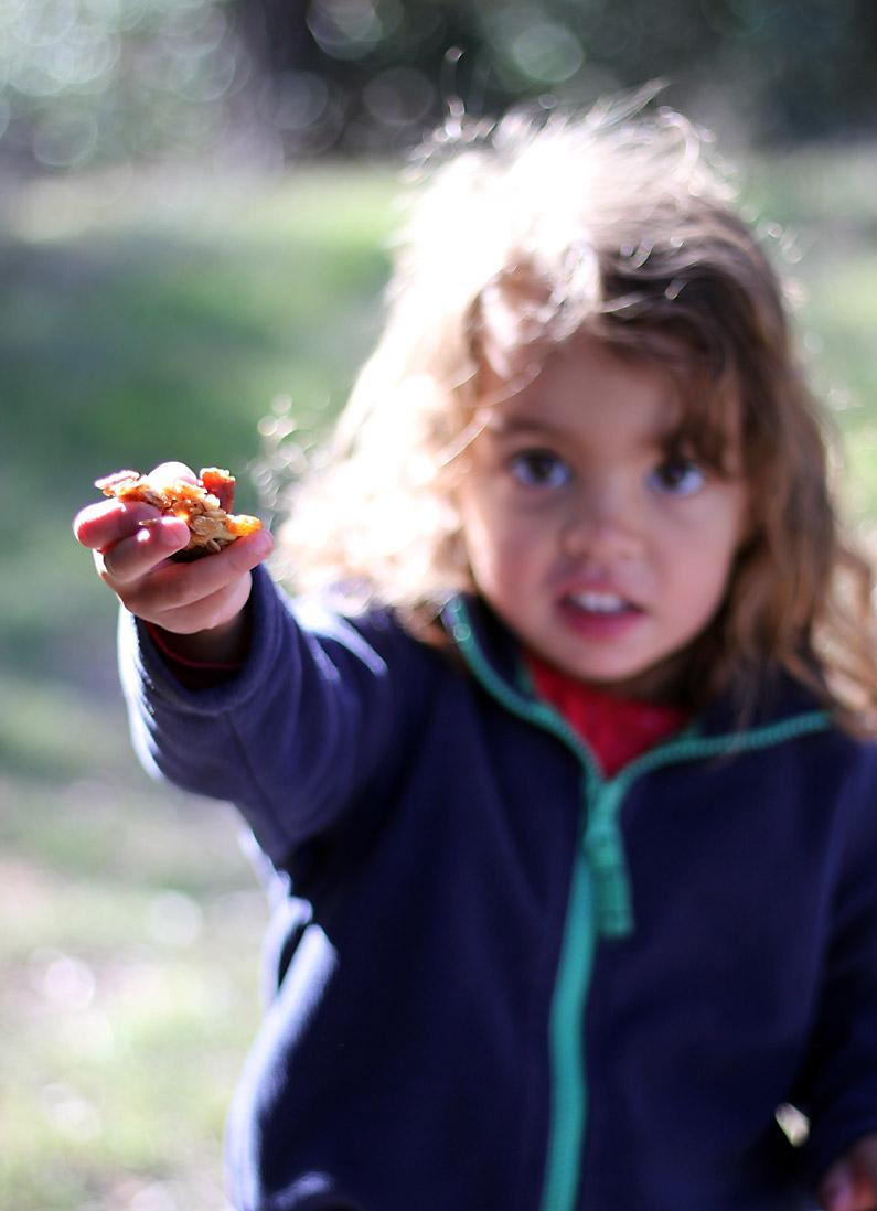pecan-raisin-granola-3