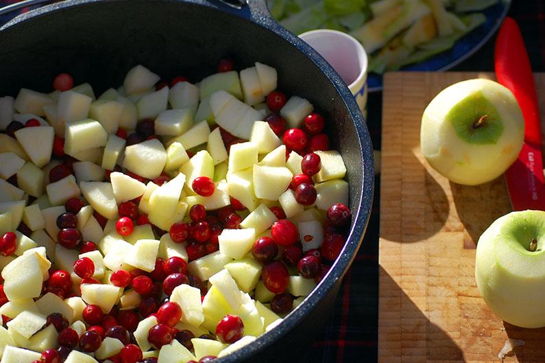 cranberry-apple-dutch-oven-2