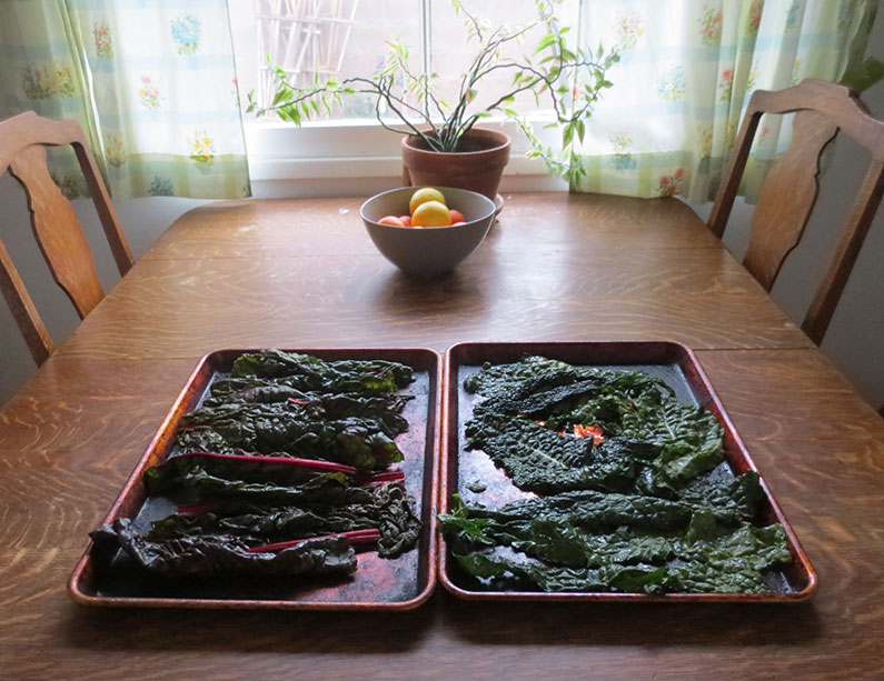 Fresh Kale on Table